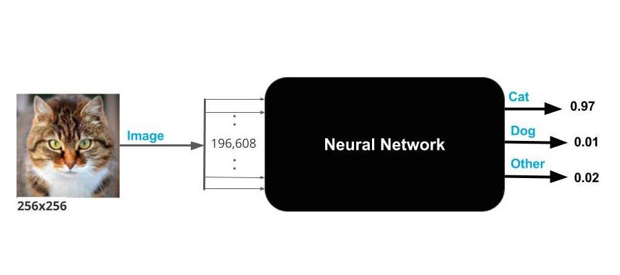 Neural Network as a Black Box