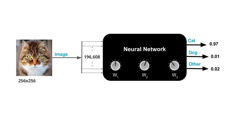 Neural Network as a Blackbox