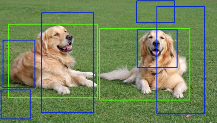 Selective Search for Object Detection (C++ / Python)