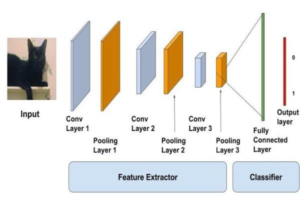 Image Classification using Convolutional Neural Networks in Keras