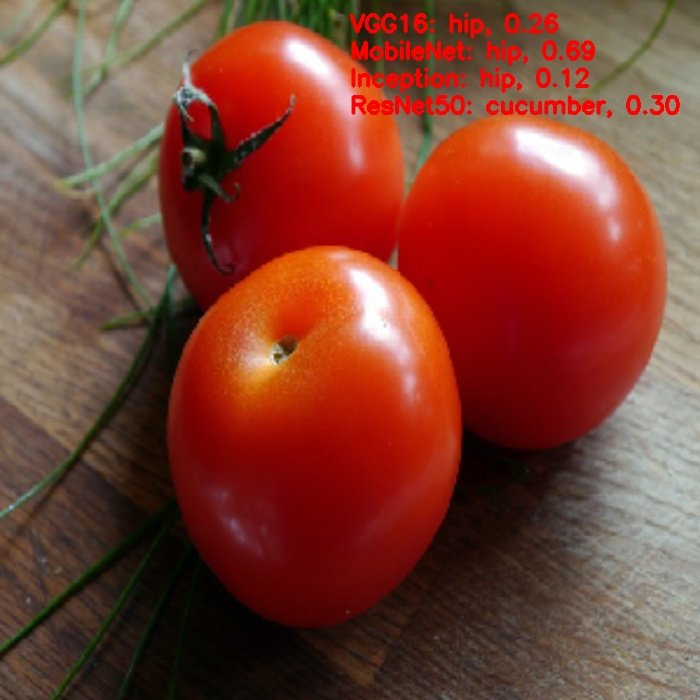 output of tomato image