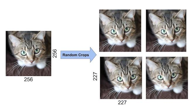 AlexNet Data Augmentation Random Crops