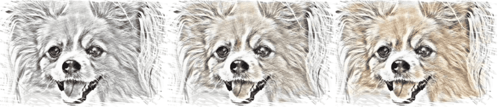 Colorization example without and with color rebalancing - Dog Sketch