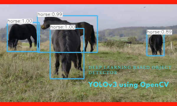 Deep Learning based Object Detection using YOLOv3 with OpenCV ( Python / C++ )