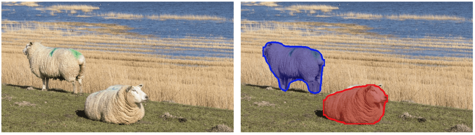 Deep learning based Object Detection and Instance Segmentation using