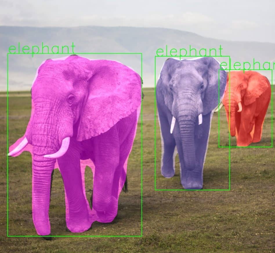 Mask RCNN result for elephant