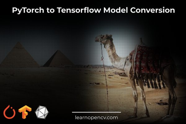 PyTorch to Tensorflow Model Conversion