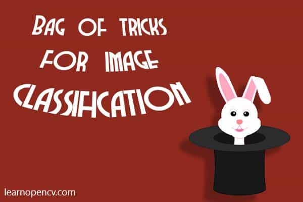 Bag of Tricks for Image Classification